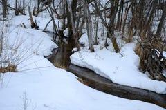 Ruscello di inverno Fotografie Stock Libere da Diritti