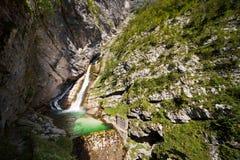 Ruscello di pietra del fiume dell'acqua della cascata fotografie stock libere da diritti