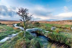 Ruscello di Walla su Dartmoor Fotografia Stock