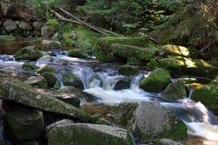 Ruscello in foresta. Esposizione lunga. immagini stock libere da diritti