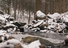 Ruscello nascosto nella foresta delle pietre Immagini Stock Libere da Diritti