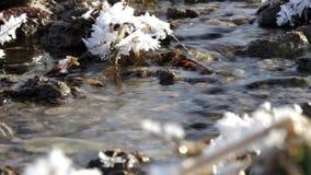 Ruscello scorrente in un paesaggio congelato stock footage