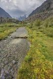 Ruscello in valle di Akkem Montagna di Altai La Russia Fotografie Stock