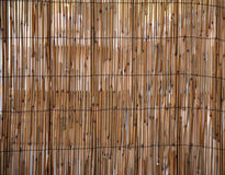 Rush bamboo pattern. Bamboo or rush pattern background royalty free stock photography