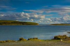 Rusheen海湾在戈尔韦 爱尔兰 库存图片