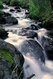 Rushing Creek. In Colorado, U.S.A stock photo