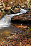 Rushing creek - autumn Stock Photography