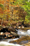 Rushing creek - autumn Stock Photos
