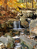 Rushing creek - autumn Royalty Free Stock Images