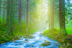 Rushing mountain river Stock Photography