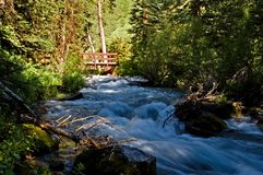 Rushing Mountain Stream. Spring run-off from the mountains captured along a shady stream in Colorado Stock Photo