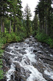 Rushing mountain stream Royalty Free Stock Photo