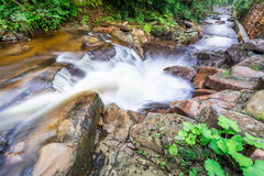 Rushing mountain stream Stock Photos