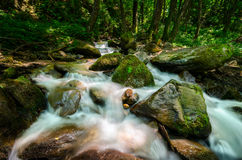 Rushing mountain waters. Wild and rushing mountain stream located deep in the forest Stock Image