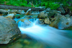 Rushing river Royalty Free Stock Photography