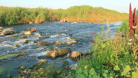 Rushing river stock video footage