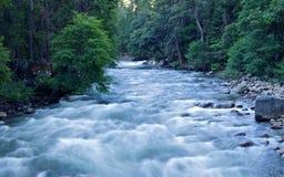 Rushing River Royalty Free Stock Photos