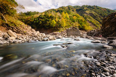 Rushing river in a mountain forest Stock Images