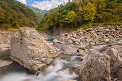 Rushing river in a mountain forest Stock Image