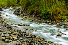 Rushing river in a mountain forest Stock Photography