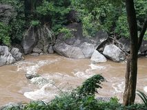 Rushing river. In  a tropical forest Stock Images