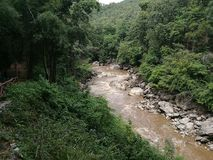 Rushing river. In a tropical forest Stock Photography