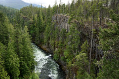 Rushing River. View of a rushing river and cliff in western British Columbia Royalty Free Stock Photography