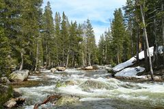 Rushing River in Yosemite royalty free stock photography