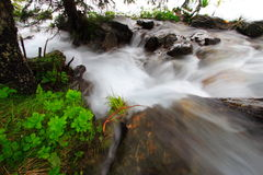 Rushing rocky stream. Water rushing over rocks and boulders in a mountain stream or brook in spring Stock Images
