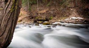 Rushing Stream Stock Image