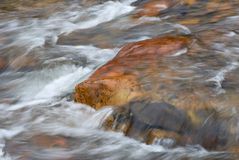 Rushing Stream Royalty Free Stock Images