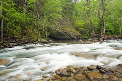 Rushing stream in forest Stock Photos