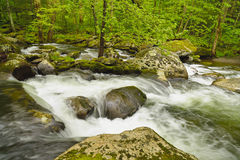 Rushing stream over boulders. Stock Photography