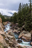 Rushing stream river water through Eleven Mile Canyon Colorado Royalty Free Stock Photos
