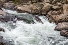 Rushing stream river water through Eleven Mile Canyon Colorado Stock Photography