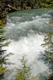 Rushing Water. In stream at Glacier Park, Montana Stock Photography