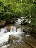Rushing water in the forest stock image