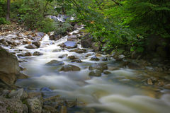Rushing water over rocks in a creek Royalty Free Stock Images