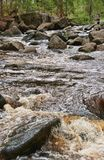 Rushing water in river Royalty Free Stock Images
