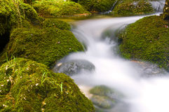 Rushing waters Royalty Free Stock Image