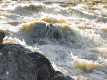 Rushing waters of a swollen river Royalty Free Stock Photo