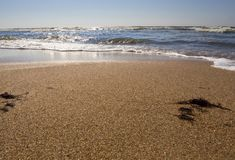 Rushing wave on a sunny day on the sandy beach of the Baltic Sea in Palanga, Lithuania stock images