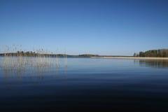 rushy lake Fotografering för Bildbyråer