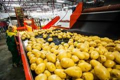 Rusia, Omsk - 26 de septiembre de 2014: fábrica vegetal Fotos de archivo libres de regalías