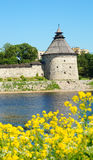 Rusia, Pscov Vista de la torre de Pokrovskaya imágenes de archivo libres de regalías