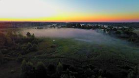 Rusia, región de Novgorod, amanecer de oro (vuelos aéreos del abejón) almacen de video