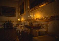 Rusia St Petersburg Royaltyfri Fotografi