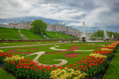 Rusia St Petersburg. City Art Building Royalty Free Stock Photo