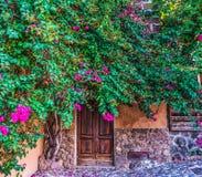 Rusic drzwi otaczający roślinami Zdjęcie Royalty Free