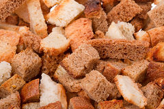 Rusk of bread Royalty Free Stock Photography
